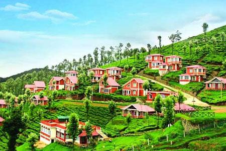 International Travel Agents In Coimbatore